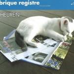 Rubrique-registre1